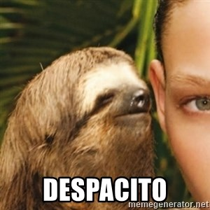 Whispering sloth -  Despacito