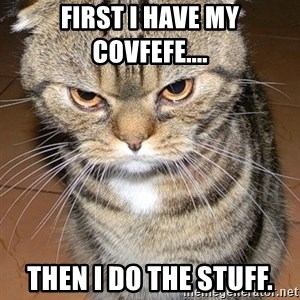 angry cat 2 - FIRST I HAVE MY COVFEFE.... then I do the stuff.