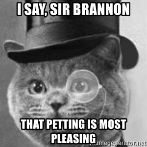 Monocle Cat - I say, Sir brannoN that petting is most pLeasing