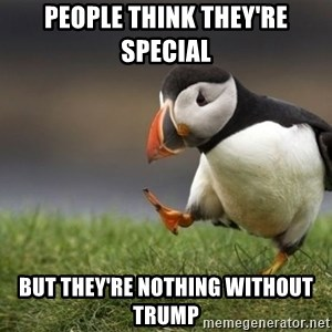 Unpopular Opinion Puffin - people think they're special but they're nothing without trump