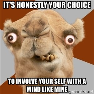 Crazy Camel lol - It's honestly your choice To involve your self with a mind like mine