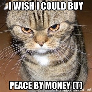 angry cat 2 - i wish i could buy  peace by money (t)