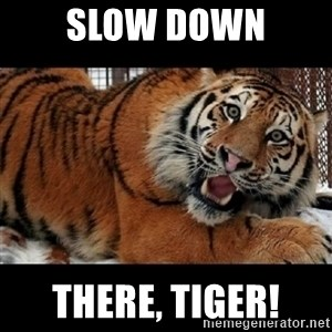 Sarcasm Tiger - slow down there, tiger!