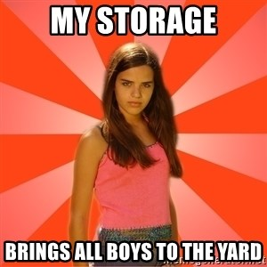 Jealous Girl - my storage brings all boys to the yard