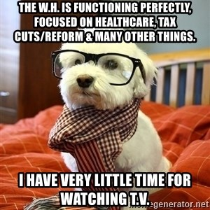 hipster dog - The W.H. is functioning perfectly, focused on HealthCare, Tax Cuts/Reform & many other things.  I HAVE VERY LITTLE TIME FOR WATCHING T.V.