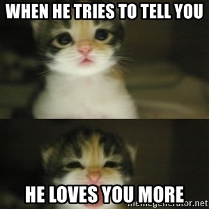 Adorable Kitten - when he tries to tell you  he loves you more