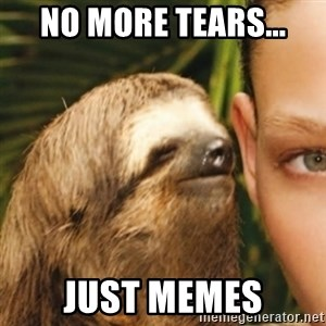 Whispering sloth - No more tears... Just memes