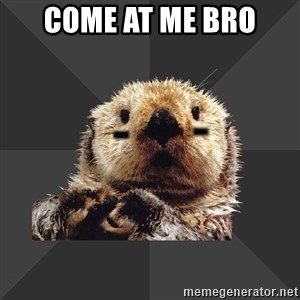 Roller Derby Otter - come at me bro