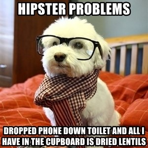 hipster dog - Hipster problems dropped phone down toilet and all i have in the cupboard is dried lentils