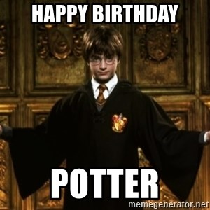 Harry Potter Come At Me Bro - HAPPY birthday Potter