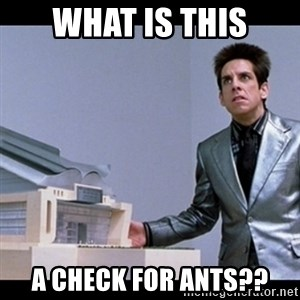 Zoolander for Ants - What is this A check for ants??