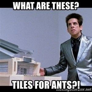 Zoolander for Ants - what are these? tiles for ants?!