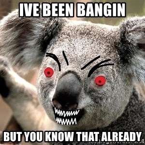 Abortion Koala - Ive been bangin But you know that already