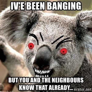 Abortion Koala - Iv'e been Banging But you and the neighbours know that already...