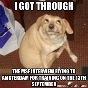 Oh You Dog - I got through The MSF INTERVIEW Flying to amsterdam for training on the 13th september