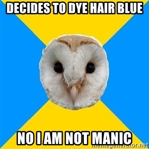 Bipolar Owl - Decides to dye hair blUe No i am not MANIC