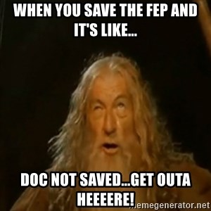 Gandalf You Shall Not Pass - When you save the FEP and it's like... Doc not SAVED...Get outa heeeere!