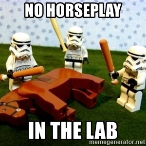 Beating a Dead Horse stormtrooper - No horseplay in the lab