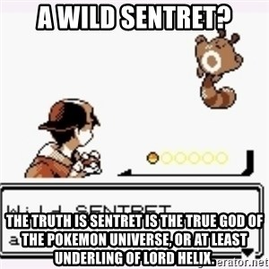 a wild pokemon appeared - A wild sentret? The truth is sentret is the true god of the pokemon universe, or at least underling of lord helix.