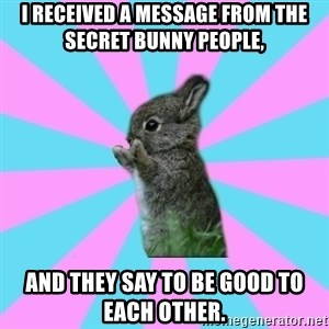yAy FoR LifE BunNy - I received a message from the secret bunny people,  AND THEY SAY TO BE GOOD TO EACH OTHER.