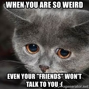 """sad cat - when you are so weird even your """"friends"""" won't talk to you :("""
