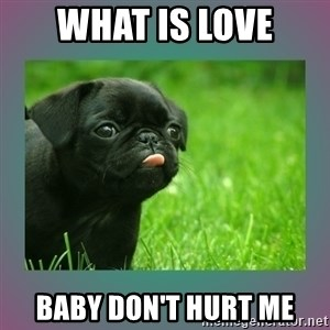 derp - What is love Baby don't hurt me