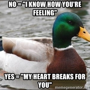 "Actual Advice Mallard 1 - no = ""I know how you're feeling"" Yes = ""My heart breaks for you"""