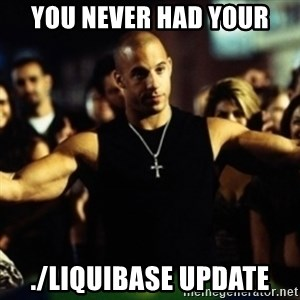 Dom Fast and Furious - You never had your ./liquibase update