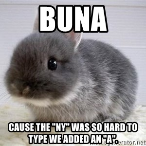 """ADHD Bunny - BUNA Cause the """"NY"""" was so hard to type we added an """"A""""."""