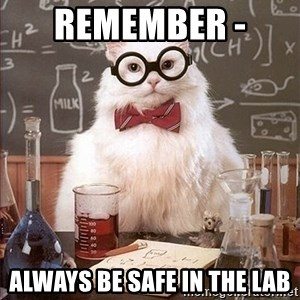Science Cat - Remember -  always be safe in the lab