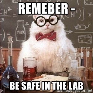 Science Cat - Remeber -  be safe in the lab