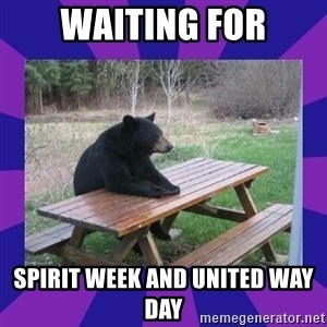 waiting bear - WAITING FOR SPIRIT WEEK AND UNITED WAY DAY