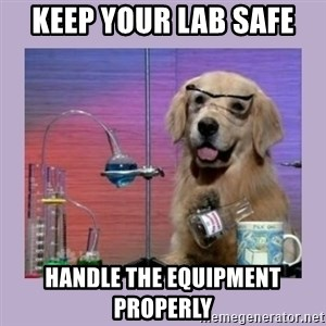 Dog Scientist - keep your lab safe handle the equipment properly