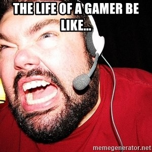 Angry Gamer - The life of a gamer be like...