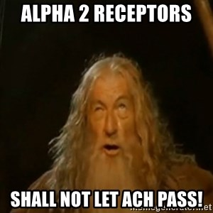 Gandalf You Shall Not Pass - Alpha 2 receptors  shall not let ach pass!