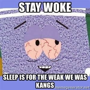 Towelie - Stay woke Sleep is for the weak We Was Kangs