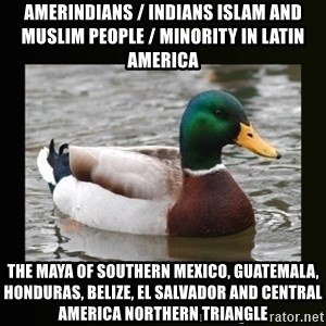 good advice duck - Amerindians / Indians Islam and Muslim People / Minority in Latin America The Maya of Southern Mexico, Guatemala, Honduras, Belize, El Salvador and Central America Northern Triangle