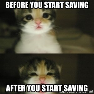 Adorable Kitten - bEFORE YOU START SAVING AFTER YOU START SAVING