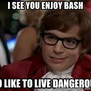I too like to live dangerously - I see you enjoy bash