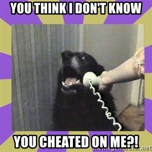 Yes, this is dog! - You think i don't know You cheated on me?!
