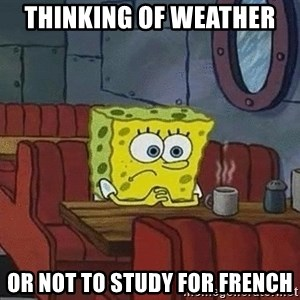 Coffee shop spongebob - thinking of weather  or not to study for french