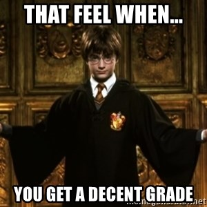 Harry Potter Come At Me Bro - that feel when... you get a decent grade