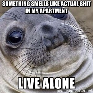 Awkward Moment Seal - Something smells like actual shit in my apartment live alone