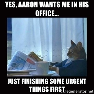 i should buy a boat cat - YES, AaRON WANTS ME IN HIS OFFICE... JUST FINISHING SOME URGENT THINGS FIRST