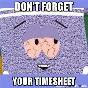 Towelie - don't forget your timesheet