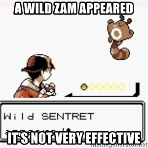 a wild pokemon appeared - a wild zam appeared it's not very effective