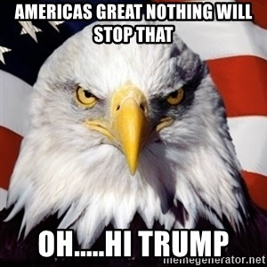 Freedom Eagle  - Americas great nothing will stop that oh.....hi trump