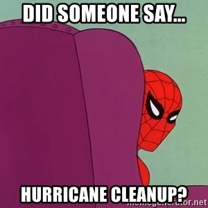 Suspicious Spiderman - did someone say... HURRICANE cleanup?