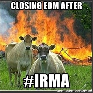 Evil Cows - CLOSING EOM AFTER #IRMA