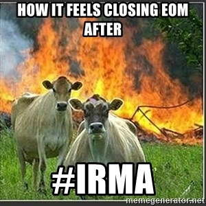 Evil Cows - HOW IT FEELS CLOSING EOM AFTER #IRMA